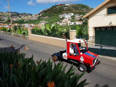 Corrida de carros de pau: a tradição mantém-se na Ponta do sol