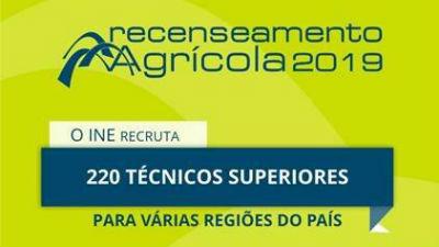 Oportunidade: INE recruta 6 técnicos especialistas para Madeira